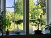 SchwedenhausMai-Juni2016- 23