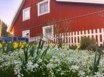 Schwedenhaus_03_17 8